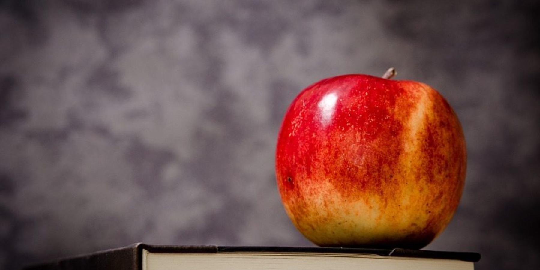 Potrzeba edukacji wmarketingu