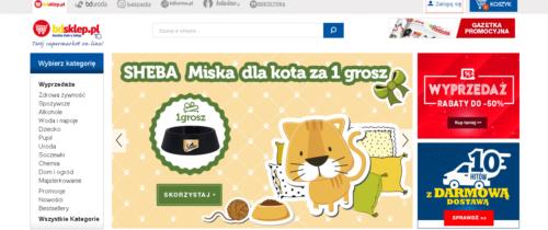 Historia sukcesu sklepu internetowego BDsklep.pl
