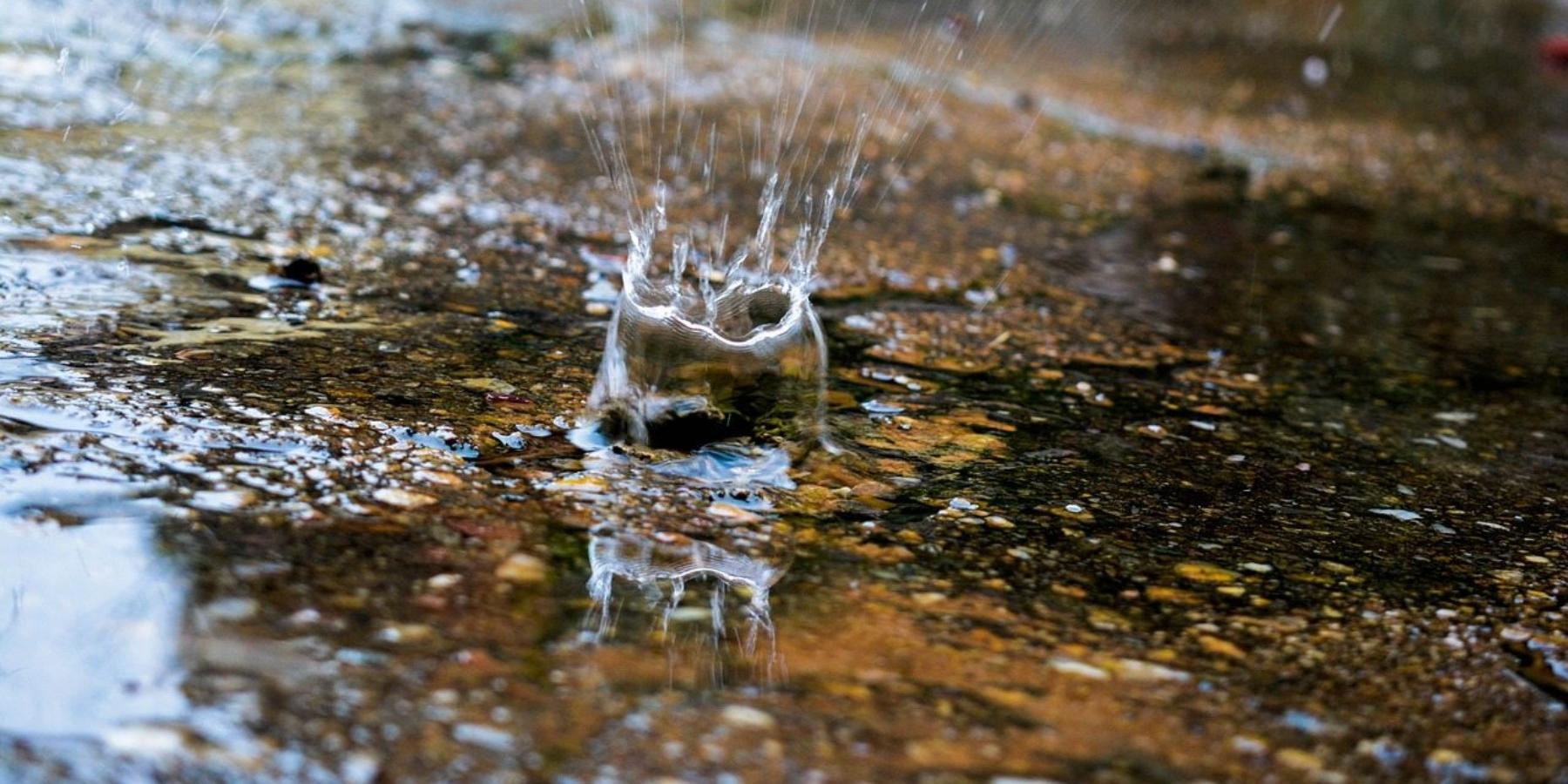 Nietylkorolnictwo iturystyka. Jak pogoda wpływa naTwójbiznes