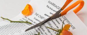 biznes rozwodowy