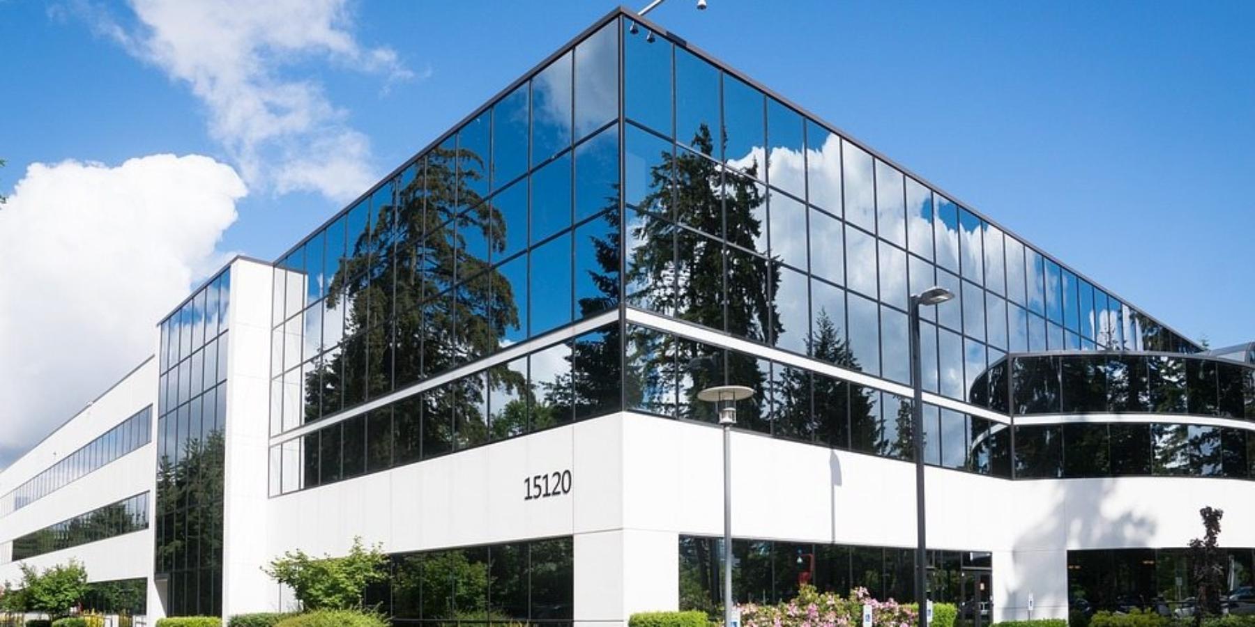 Drabina naszczyt – prawdziwa historia Microsoftu