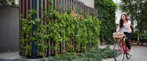 Allegro stawia zielone automaty paczkowe