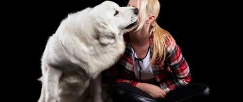 PakaDlaSzczeniaka – rozwiązanie ułatwiające życie hodowcom psów